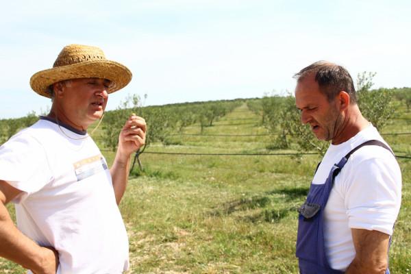 "Poljoprivredna zadruga ""Dubrava"" iz Raštana Donjih: Pozitivan primjer samostalno pokrenute  poljoprivredne djelatnosti"