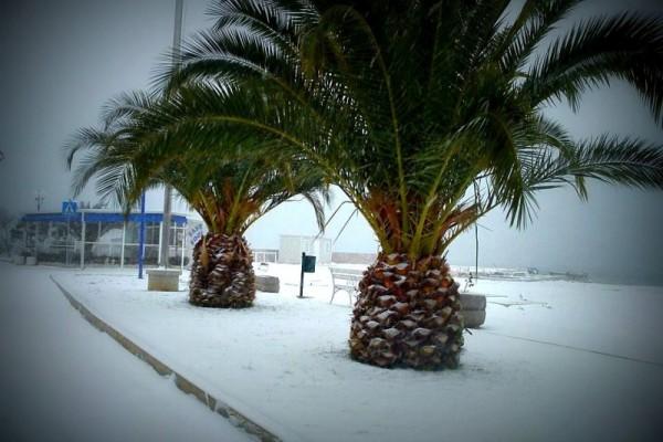 Turanj u snijegu Eme Jačan najbolji s 480 lajkova